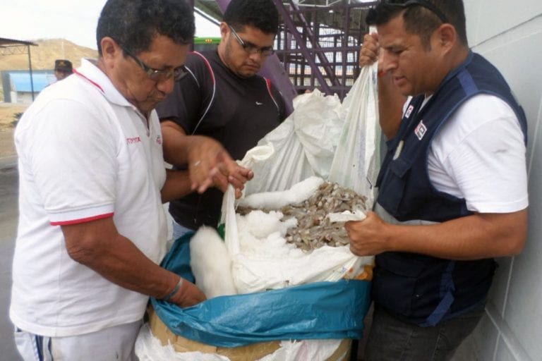 Asociación de Extractores de Machas preocupados por el recurso