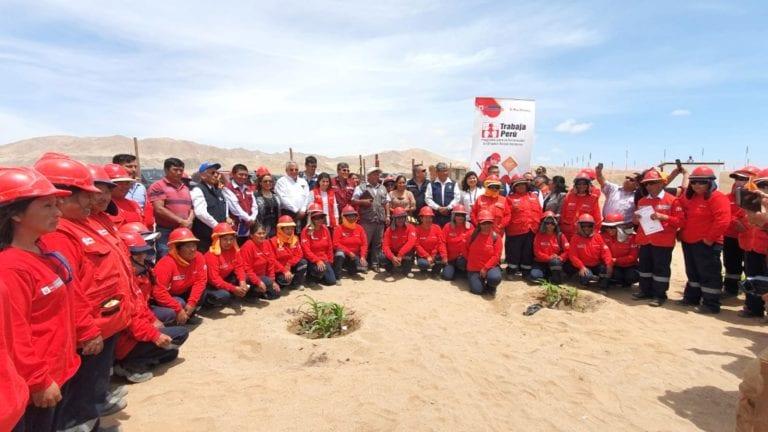 Directora ejecutiva de Trabaja Perú supervisó proyecto de reforestación