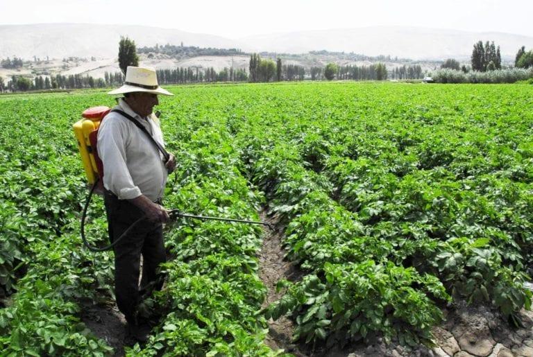 Agricultores, productores y empresarios deberán portar pase personal laboral
