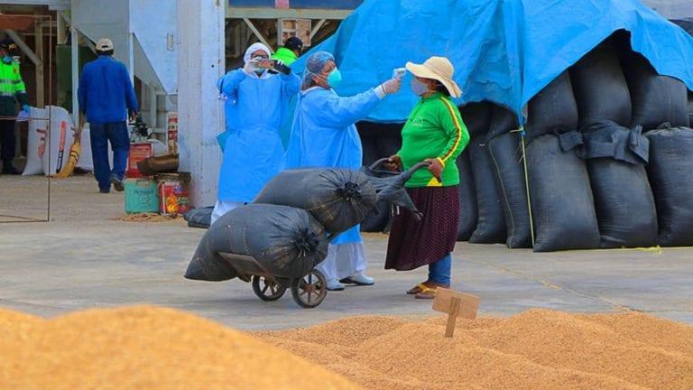 Comité agrario de Punta de Bombón inspecciona otro molino de arroz