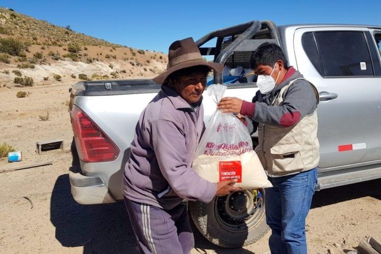 Southern Peru entrega sustituto lácteo para fortalecer camélidos sudamericanos